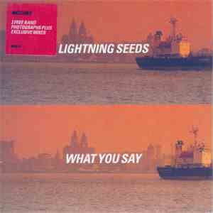 Lightning Seeds - What You Say download free